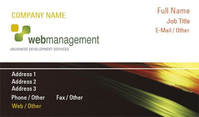 Web Management Business Card Template